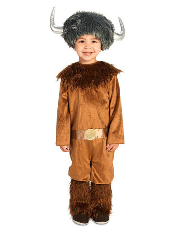 Fearless Viking Toddler Costume